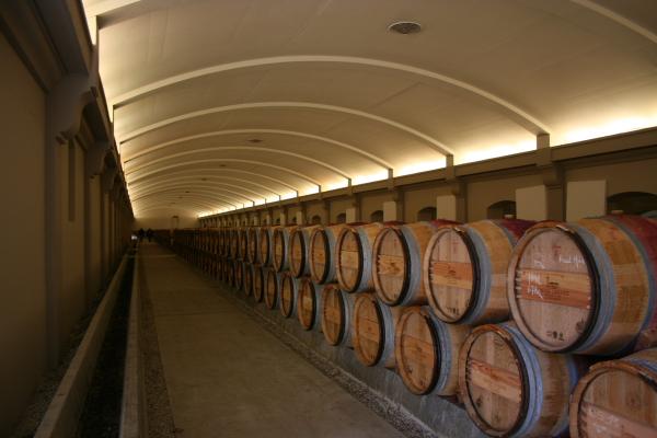 100メートルもの距離のあるワインセラーに並ぶ樽は圧巻